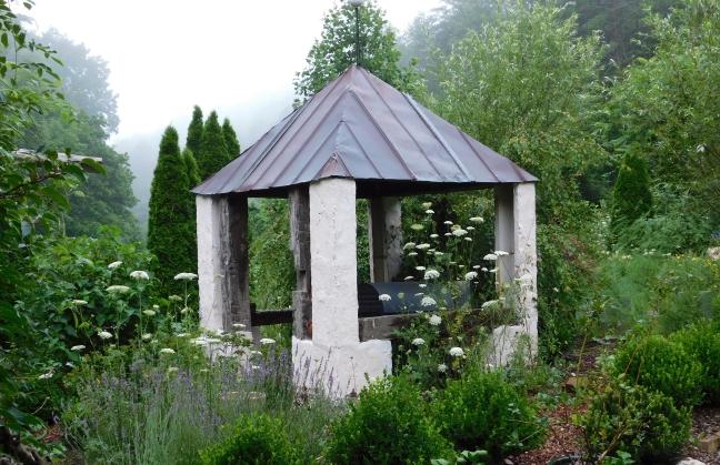 """Gardenia jasminoides """"Ruin Garden"""""""