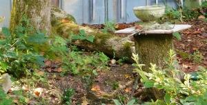 Gardenia - New Secret Recipe for Success